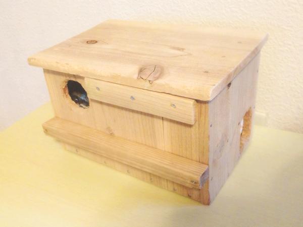画像:インコさん用木箱